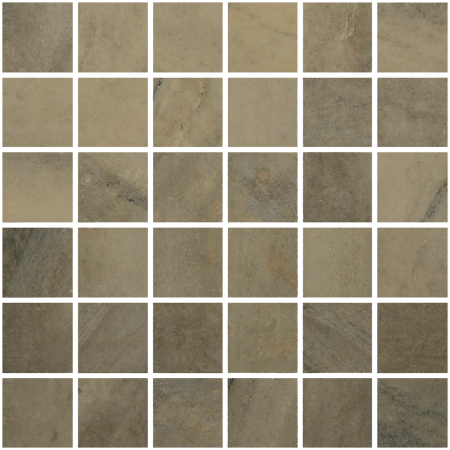 Evolution 2×2 earth mosaic